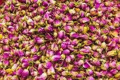 Bourgeons secs de fleur rose Photos stock