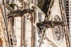 Bourges domkyrkaFrankrike vattenkastare Arkivfoto
