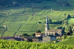 Bourgogne Image libre de droits