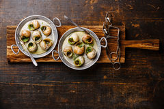 Bourgogne Escargot ślimaczki z czosnków ziele masłem Zdjęcia Stock