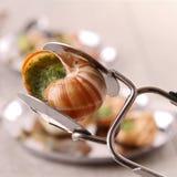 bourgogne escargot ślimaczek Zdjęcie Royalty Free