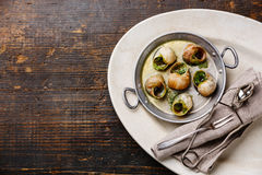 Bourgogne Escargot Snails with garlic herbs butter Royalty Free Stock Photography