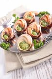 Bourgogne snail, french gastronomy Royalty Free Stock Images