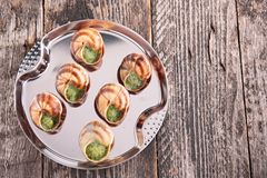 Bourgogne snail, french gastronomy Stock Images