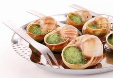 Bourgogne snails Stock Photos