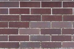 Bourgognetegelstenvägg, texturbakgrund Arkivfoton