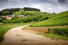 bourgondië Weg in de wijngaarden die tot het dorp van pernand-Vergelesses in CÃ'te DE Beaune leiden frankrijk stock afbeeldingen