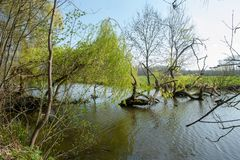 Bourgoyen on a sunny spring afternoon royalty free stock photography