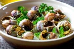 Bourguignonne蜗牛澳大利亚焦干酪 免版税图库摄影