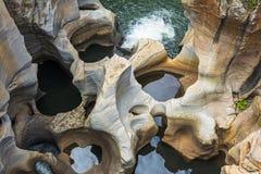 Bourkes lyckagropar, Sydafrika Arkivbilder
