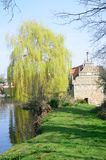Bourne Mill Colchester in Portrait aspect Royalty Free Stock Image