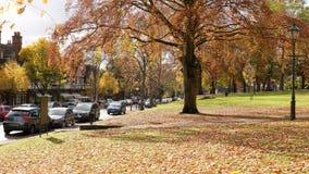 Bournvilledorp en Groen in de Herfst Royalty-vrije Stock Afbeeldingen