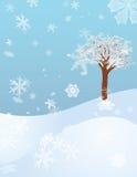 Bourrasque de l'hiver Image libre de droits