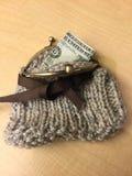 Bourse tricotée de pièce de monnaie avec le ruban de Brown et la fermeture de rupture de cabillot de laiton Image libre de droits