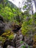 Bousculade étroite de Boulder en ravin, entaille de Mahoosuc, traînée appalachienne photographie stock