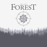 Boussole et forêt Image stock