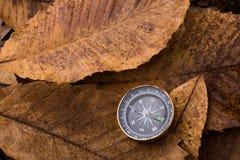 Boussole noire comme instrument sur les feuilles sèches Photo libre de droits