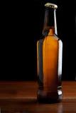 Bouteille à bière photographie stock