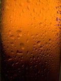 Bouteille à bière Spritzed Image libre de droits