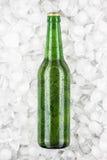 Bouteille à bière verte dans la glace Photos stock