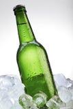 Bouteille à bière verte sur la glace Photos stock