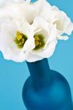 Bouteille bleue avec des fleurs Photos libres de droits