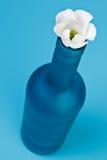 Bouteille bleue avec la fleur Photographie stock libre de droits