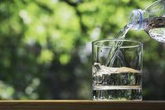 Bouteille d'eau de participation de main sur en bois à l'arrière-plan de nature images libres de droits
