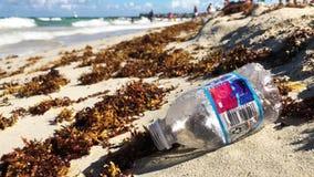 Bouteille d'eau en plastique avec l'algue de sargassum sur la plage banque de vidéos