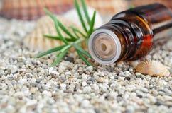 Bouteille d'essence de romarin essentielle Fin d'insertion d'astuce de compte-gouttes de bouteille  photos stock