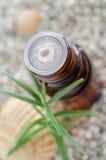 Bouteille d'essence de romarin essentielle Fin d'insertion d'astuce de compte-gouttes de bouteille  image stock