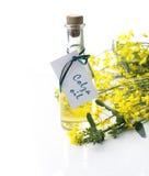 Bouteille d'huile de colza Photographie stock libre de droits