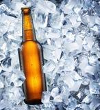 Bouteille de bière Photos stock