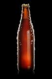 Bouteille de Brown de bière Images stock