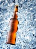 Bouteille de Brown de bière avec des baisses Photo libre de droits
