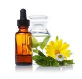 Bouteille de compte-gouttes de phytothérapie ou d'aromatherapy Photographie stock libre de droits
