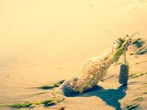 bouteille de mer Photographie stock libre de droits
