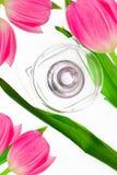 Bouteille de parfum entourée avec les tulipes roses Photos libres de droits