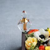 Bouteille de parfum de luxe avec des fleurs dans le boîte-cadeau Parfumerie, cosmétiques, collection de parfum L'espace libre pou Image libre de droits