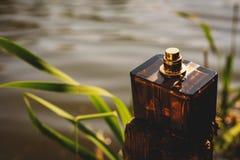 Bouteille de parfum normale Photos libres de droits