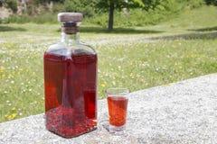 Bouteille de Patxaran et d'un verre à liqueur Photographie stock libre de droits