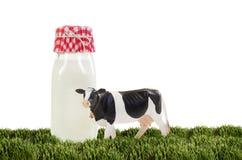 Bouteille de vache laitière du Holstein de lait Photographie stock libre de droits