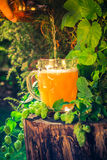 Bouteille de versement de chope de bière Image libre de droits