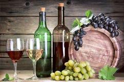 Bouteille de vigne Photos libres de droits
