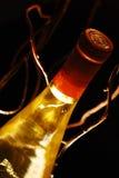Bouteille de vin allumée par dos Image libre de droits