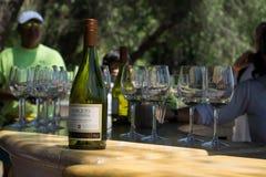 Bouteille de vin blanc de la conque y Toro photographie stock libre de droits