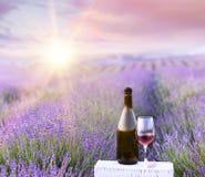 Bouteille de vin contre la lavande Image libre de droits
