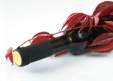 Bouteille de vin et jeune raisin Photographie stock libre de droits