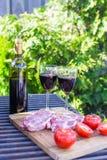 Bouteille de vin rouge, de bifteck et de tomates sur le barbecue dehors Photos libres de droits