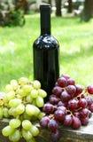 Bouteille de vin rouge et de raisins Image libre de droits